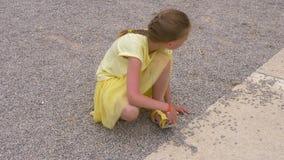 投入一点石渣石头的嬉戏的女孩少年在胡闹的鞋子 股票视频