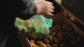 投入土豆的妇女的手在塑料袋,地方市场外面,有机食品 股票视频