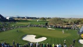 投入在绿色的高尔夫球运动员 免版税库存图片