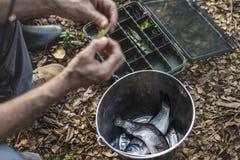 投入在诱饵的渔夫的特写镜头 免版税图库摄影