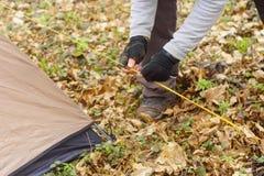 投入帐篷的年轻人在森林a 库存照片