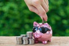 投入硬币的妇女手在有堆的光滑的桃红色存钱罐中  库存图片