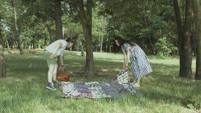 投入野餐毯子的快乐的家庭在公园 影视素材