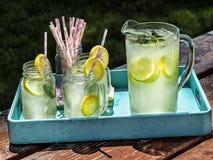 投手柠檬水和冷淡的玻璃在野餐桌上 免版税库存照片