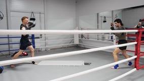投掷球的拳击手人,当在健身房时的拳击训练 做准备在战斗训练前的体育人 心脏训练 ?? 股票视频