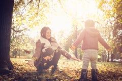 投掷的下落的叶子在公园 免版税库存照片