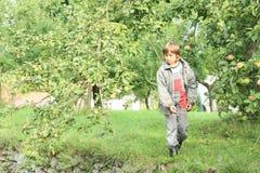 投掷苹果的男孩 图库摄影