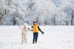 投掷雪的孩子在森林附近 库存图片