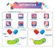 抗生素传染媒介例证 被标记的健康疗程治疗计划 向量例证