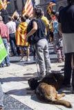 抗议召集自由和独立西班牙卡塔龙尼亚巴塞罗那 库存图片