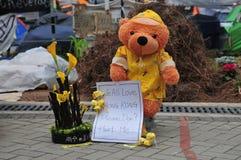 抗议熊 库存图片
