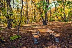 折叠的野餐桌在秋天森林里 免版税库存图片