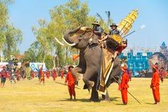 抚养泰国的大象后面国王行程 免版税库存照片