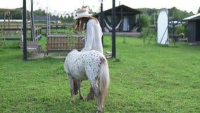抚摸一个美丽的被察觉的小马的妇女 股票录像