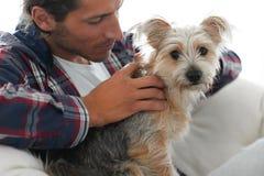 抚摸他的狗的一个微笑的人的特写镜头,当坐在一把大扶手椅子时 库存照片