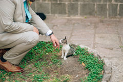 抚摸在街道上的衣服的一个人一只猫 库存图片