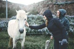 抚摸马的妇女 库存照片