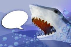 报价鲨鱼 免版税库存照片
