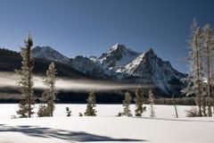 报道的冻结的湖雪冬天 免版税库存图片
