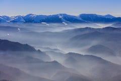 报道的横向山松雪云杉冬天 图库摄影
