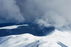 报道的横向山松雪云杉冬天 免版税库存图片