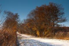 报道的运输路线雪冬天 免版税库存图片