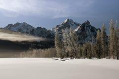 报道的雾湖雪冬天 免版税库存照片