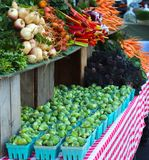 抱子甘蓝,瑞士牛皮菜加入其他菜在农夫的市场上 免版税图库摄影
