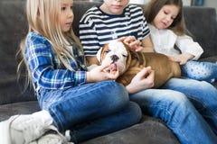 抱孩子和宠爱他的逗人喜爱的牛头犬小狗 库存图片