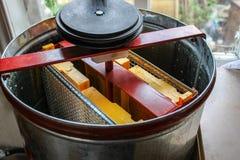 抽从蜂窝的蜂蜜在蜂蜜提取器 蜂窝的塑料框架 免版税库存照片