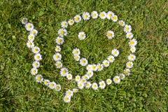抽微笑的面孔的雏菊 免版税库存照片