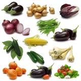 抽样人员蔬菜 免版税库存图片