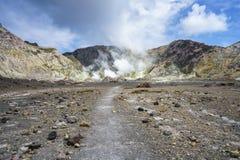 抽烟在白色海岛,新西兰14上的火山的火山口 免版税库存照片