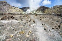 抽烟在白色海岛,新西兰16上的火山的火山口 免版税图库摄影