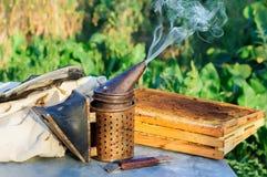 抽烟在蜂房copyspace季节性蜂蜜蜂养蜂业方面的蜂吸烟者种田有机产品导致概念 免版税库存图片