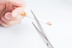 抽烟的停止竞选 免版税图库摄影