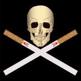 抽烟的有害的健康 免版税库存图片