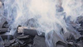 抽烟的木炭 股票录像