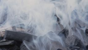 抽烟的木炭 股票视频