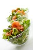 抽烟的沙拉三文鱼 免版税库存照片