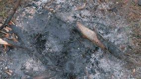 抽烟的煤炭用从塑料瓶的水倾吐 射击投入 股票录像