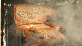 抽烟的红鲑鱼 影视素材