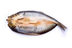 抽烟的腌鱼 免版税库存图片