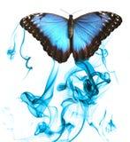 抽烟的蝴蝶 免版税库存图片