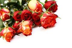 抽签玫瑰 库存图片