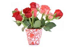 抽签玫瑰 免版税库存图片
