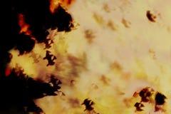 抽象万圣夜背景,黑暗的夜空的巫婆女巫 免版税库存图片