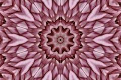 抽象万花筒粉红色 免版税库存图片