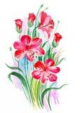 抽象与桃红色百合的水彩艺术手拉的背景 也corel凹道例证向量 免版税库存照片