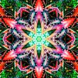 抽象五颜六色的样式背景纹理 免版税库存照片